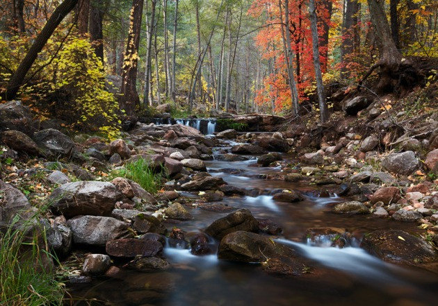 Nightfall comes quickly in November during a time of peak foliage at Horton Creek.